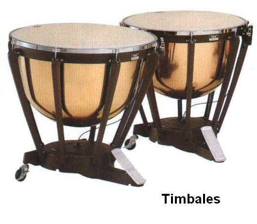 106_timbales